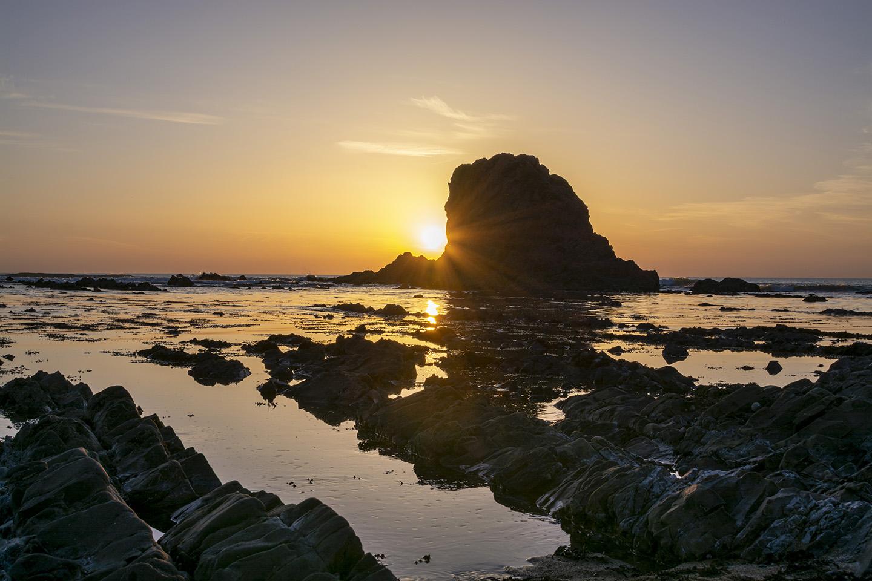 Black Rock Sunburst - Widemouth